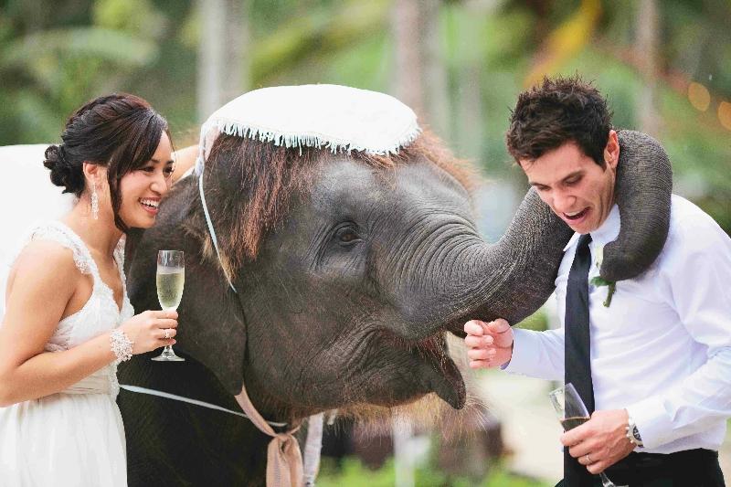 Phuket Asian Brides Thai 47