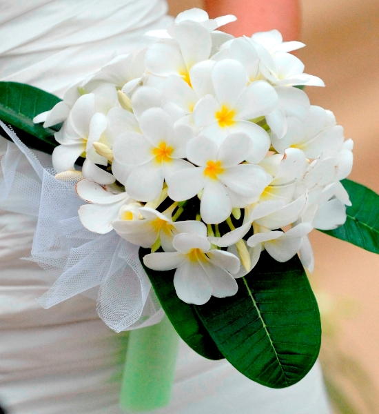 Average Cost Of Wedding Flowers 2014: Creative Events Asia : Thailand Wedding Flowers